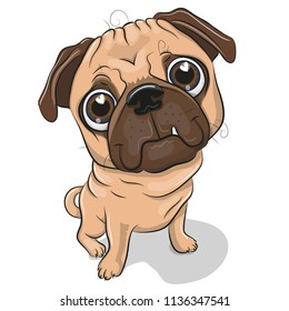 Cute Cartoon Pug Dog isolated on a white background