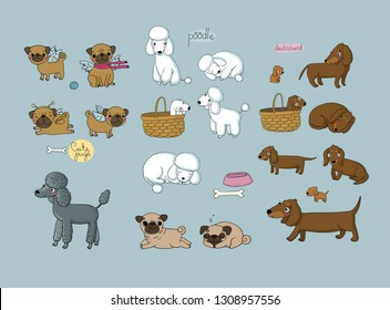 Cute cartoon pug, poodle and dachshund. Dogs and puppies. Funny animals