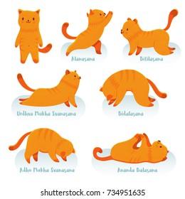 yoga cat images stock photos  vectors  shutterstock