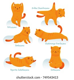 Cute cartoon red cat practicing yoga for beginners. Isolated vector clip art with titles of yoga poses
