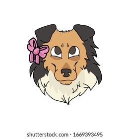 Cute cartoon rough collie dog face with pink bow vector clipart. Pedigree kennel sheepdog for dog lovers. Purebred domestic puppy for pet parlor illustration mascot. Isolated canine fluffy. EPS 10.
