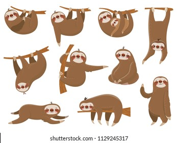 Cute cartoon sloths. Adorable rainforest animals at zoo, mother and baby family on branch, funny parents sloth animal sleeping hanging on jungle tree colorful vector isolated icon set