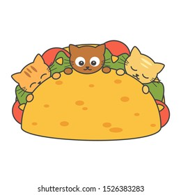 Cute cartoon tacos with vegetables and cats funny vector illustration