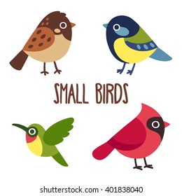 Cute cartoon wild birds set.  Sparrow and blue tit, hummingbird and red cardinal. Vector bird icons.