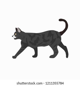 Cute cat breed British Shorthair icon for web and mobile design isolated on white background. Vector illustration.