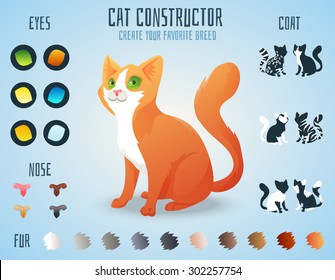 Cute cat breed constructor. You can create your own kitten breed. Change color, eyes, noses, types of coat. Vector illustration
