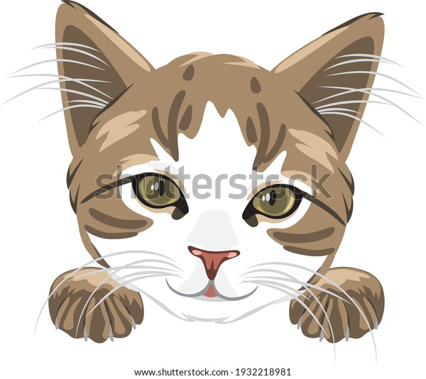 cute-cat-head-isolated-on-600w-193221898
