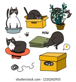 Cute cat hiding in various objects. Hand drawn colored vector set. All elements are isolated