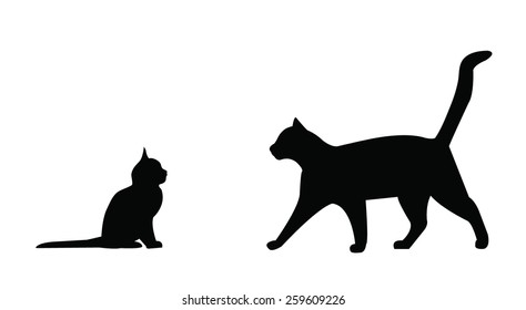 Cute cat and kitten