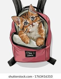 cute cat pink backpack illustration