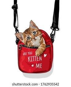 cute cat in red carry bag illustration