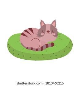 cute cat sleeping in green cushion isolated design white background vector illustration
