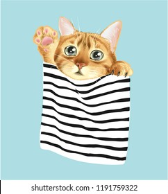 cute cat in stripe pocket illustration