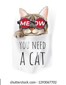 cute cat in sunglasses in shirt pocket cartoon illustration
