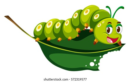 Cute caterpillar chewing green leaf illustration