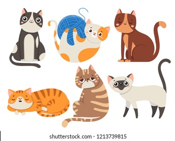 Cute cats. Fluffy cat, sitting kitten character or domestic animals. Happy funny playful and sleep kitty cats emotion. Cartoon feline isolated icons vector illustration collection