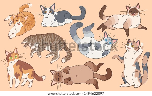 Cute Cats Funny Kittens Different Breeds Stock Vector Royalty