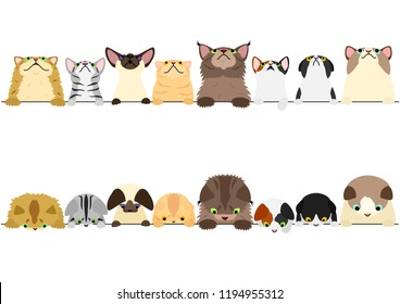 cute cats looking up and down border set