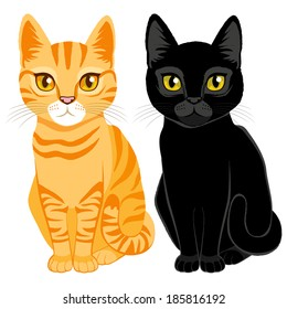 Cute cats on orange tabby and black color with orange and yellow eyes