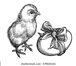 Cute chick with egg. Sketchy style. Hand drawn graphic illustration in vector. Ink drawing.