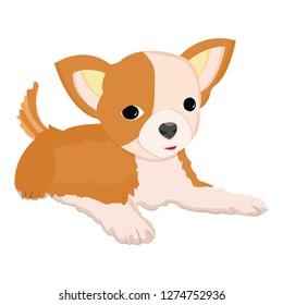 So Cute Chihuahua Dog Illustration