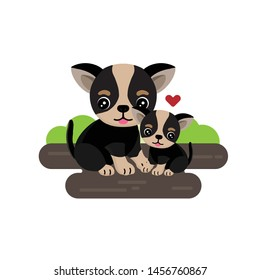 Cute Chihuahua and puppy with hearts.