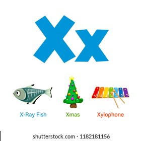 Cute children ABC animal alphabet flashcard words with the letter X for kids learning English vocabulary.