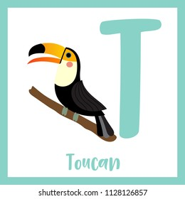 Cute children ABC animal zoo alphabet T letter flashcard of Standing Toucan bird for kids learning English vocabulary. Vector illustration.