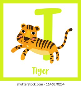 Cute children ABC animal zoo alphabet T letter flashcard of Jumping Tiger for kids learning English vocabulary. Vector illustration.