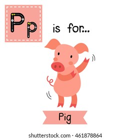 Cute children zoo alphabet P letter tracing of dancing Pig for kids learning English vocabulary.