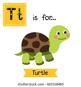 Cute children zoo alphabet T letter tracing of Turtle for kids learning English vocabulary.