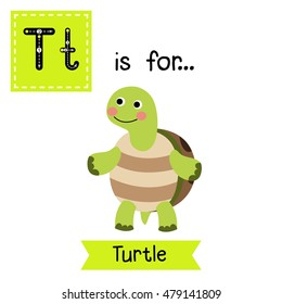 Cute children zoo alphabet T letter tracing of Turtle standing on two legs for kids learning English vocabulary.