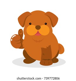Fantastic Indoor Chubby Adorable Dog - cute-chubby-fat-brown-puppy-260nw-739772806  Trends_861291  .jpg