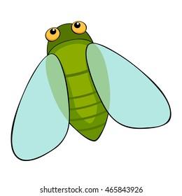 Cute cicada