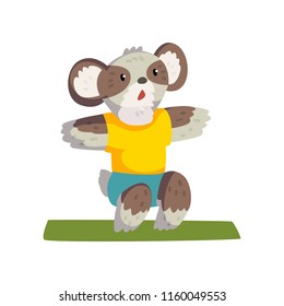 Cute coala bear doing squats wearing sports uniform, sportive animal character, fitness and healthy lifestyle vector Illustrations on a white background