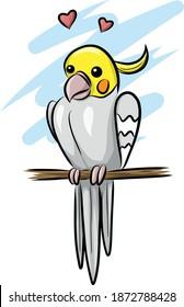 cute cockatiel bird - isolated illustration