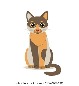 Cute Color Cartoon Cat Sitting In Front. Isolated On White Background. Sitting Cute Cat Flat Vector Illustration. Funny Character Mascot.