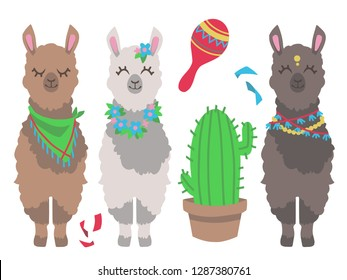 Cute colorful cartoon llama or alpaca with cactus and mexican rumba shaker graphic design vector illustration set