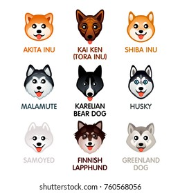 Cute colorful dog breed head icons, set II