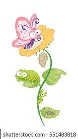Cute and Colorful Illustration Demonstrating the Life Cycle of a Butterfly