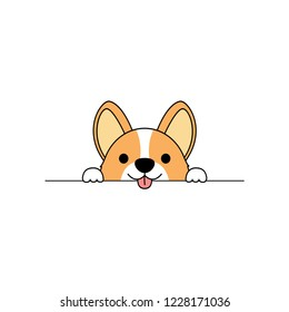 Cute corgi dog paws up over white wall, vector illustration