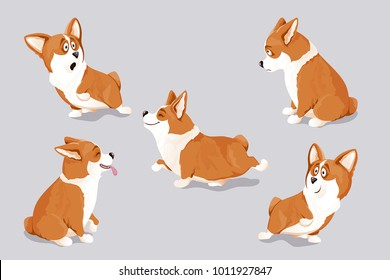 Most Inspiring Designer Chubby Adorable Dog - cute-corgi-dog-puppies-isolated-260nw-1011927847  Collection_793269  .jpg