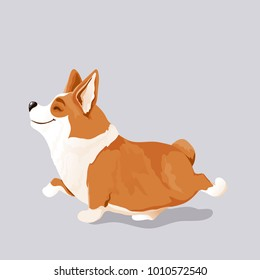a cute corgi dog puppy; isolated, hand drawn, vector illustration; perfect as kid's room wall art, prints on T-shirts, children's apparel, also for greeting cards and other designs; year of yellow dog