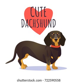 Cute dachshund dog. Character mascot. Vector clip art