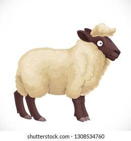 Cute dark furry sheep with light wool isolated on white background