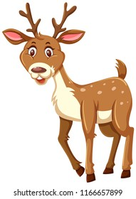 A cute deer on white background illustration