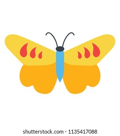 Cute design of a butterfly having comma like patterns in upper wings, icon denoting comma butterfly