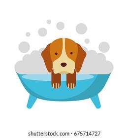 cute Dog bathing in the tub