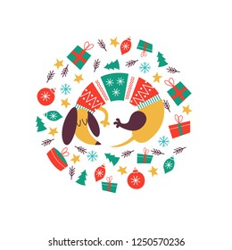 Cute dog breed Dachshund in a knitted sweater. Christmas composition. Dogs and Christmas toys, gifts. The composition is made in the form of a circle. It will look good on t-shirts, mugs, postcards.