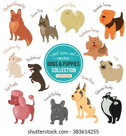 Cute dog and puppy icons isolated on white background. Vector illustration for veterinarian design. Set of cartoon flat breed dogs. Pet animal clip art characters. Adorable puppy pet images Veterinary